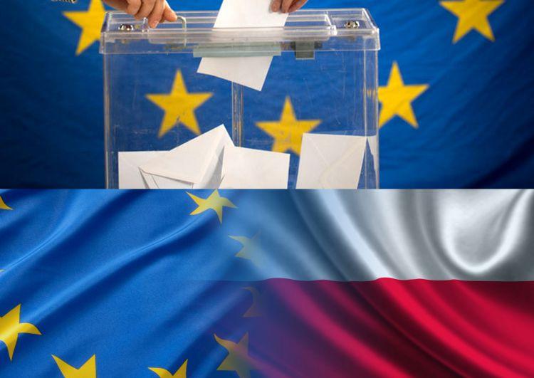 iez_kolaż wybory