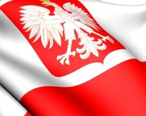 preview_certificazione_lingua_polacca_500x400_acf_cropped1